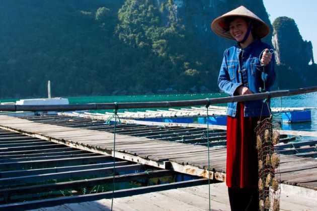 visit pearl farm in halong bay